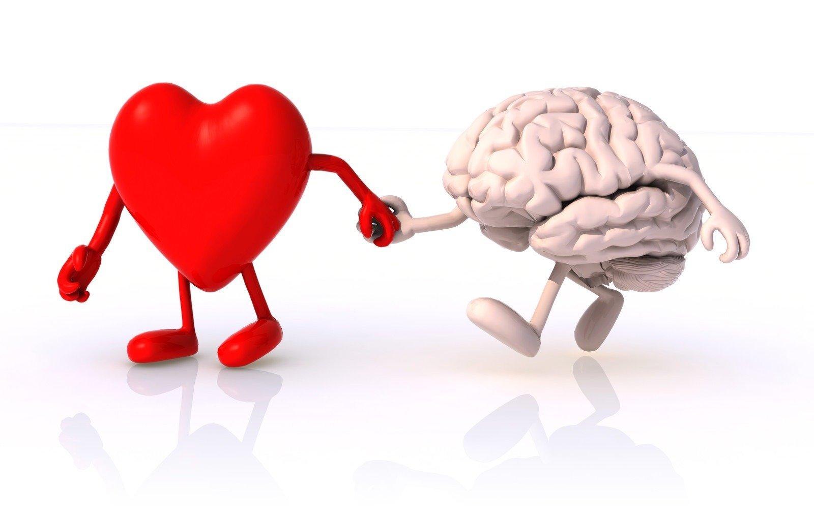 Image result for Heart Mind