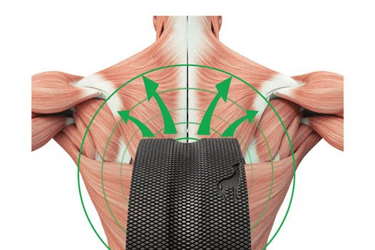 Plexus Wheel+ relieves back pain
