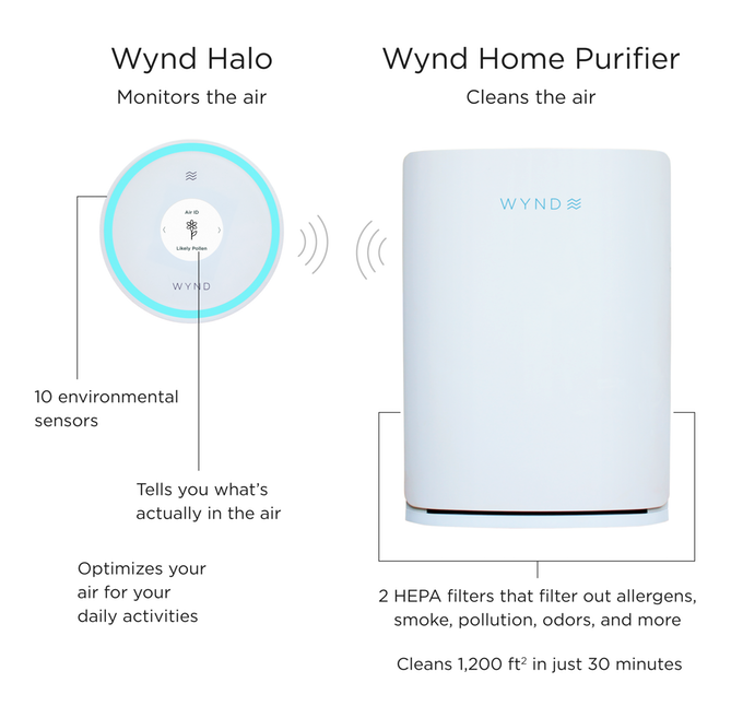 Wynd Halo and the Home PurifierWynd Halo and the Home Purifier