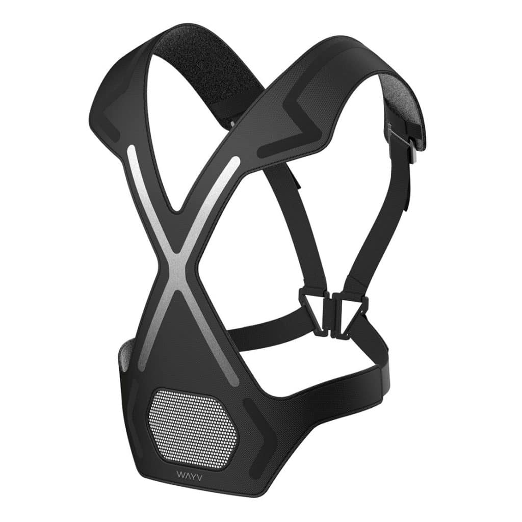 The WAYV harness