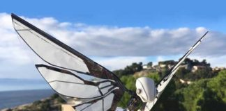 MetaFly: An insect-inspired flying Robot