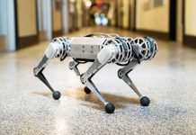 MIT's new Mini Cheetah robot