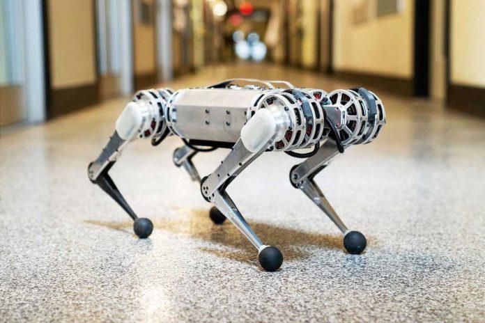 MIT's new Mini Cheetah robot