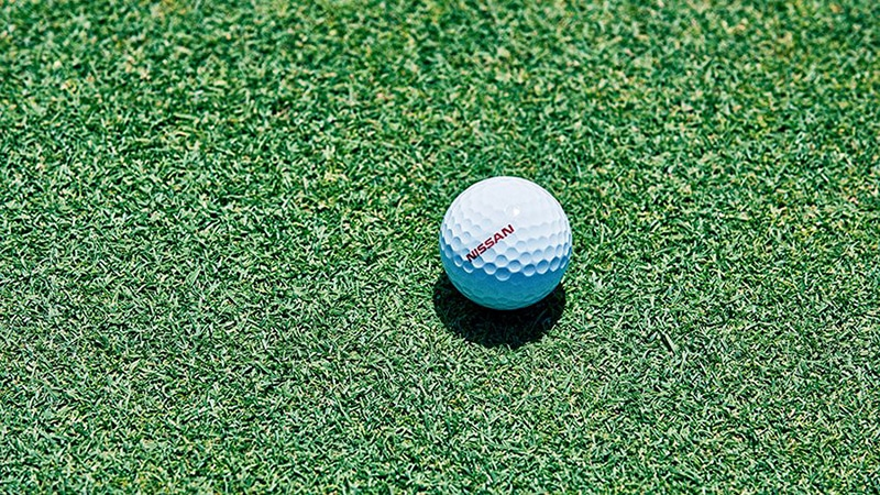 The ProPilot Golf Ball