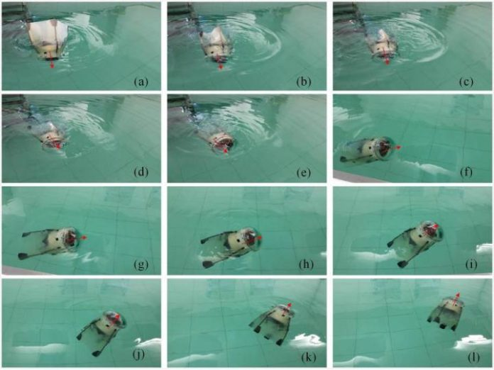 Robotic jellyfiesh, when tested in a pool.