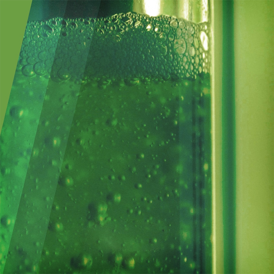 The algae is placed inside a tube system within the device.