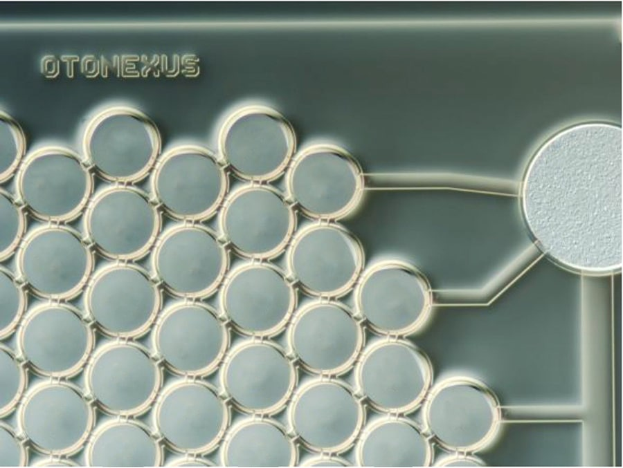 A unique CMUT chip from Fraunhofer IPMS based on ultrasound technology. Image Credit: Fraunhofer IPMS