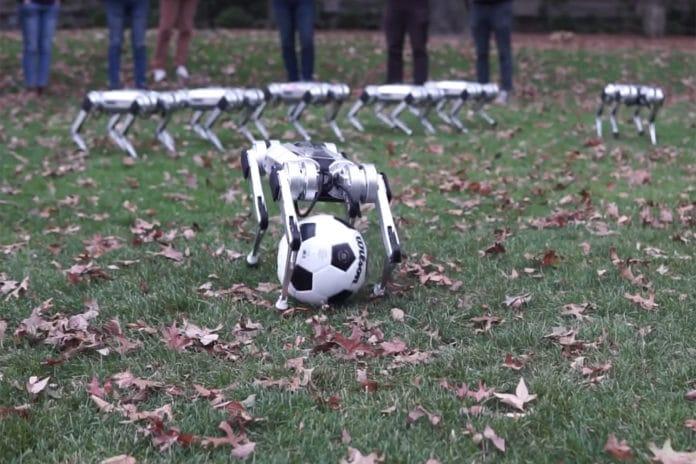 MIT Mini Cheetah robot paying soccer
