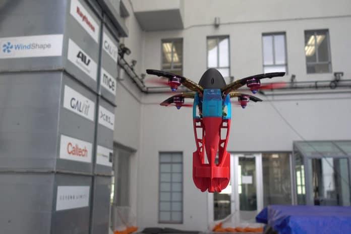 The SQUID prototype.