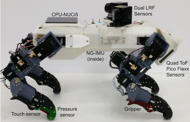 The quadruped robot is equipped with an inertial measurement unit (IMU), 3D camera, and sensors.