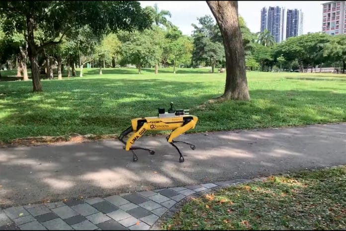 In Singapore, a Spot robot reminds park visitor to respect distancing measures.