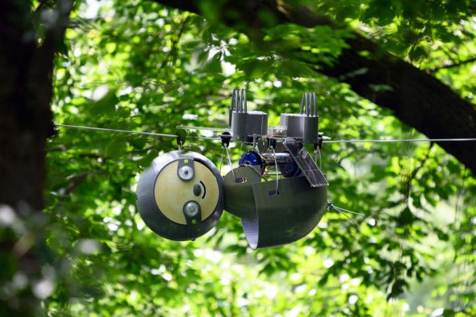 SlothBot operating in Atlanta Botanical Garden.