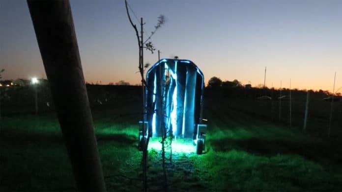 Robots use UV light to fight grape mildew.