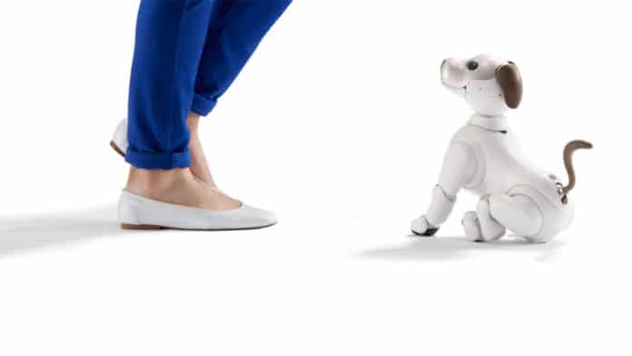 Sony's Aibo robot will be able to greet users at the front door.
