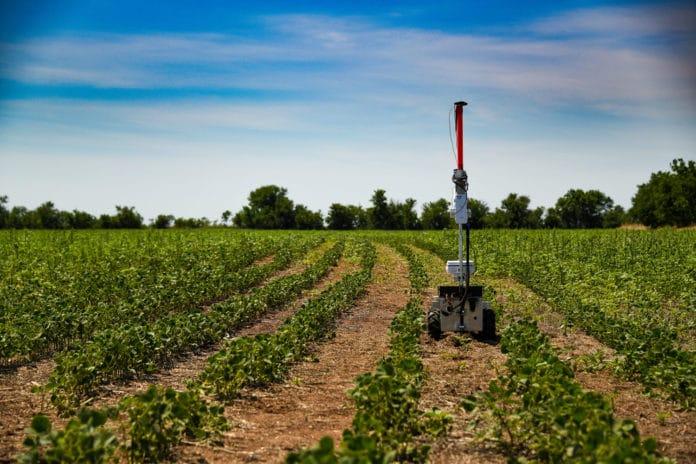 Weed-killing robot to combat weeds economically and avoid pesticides.
