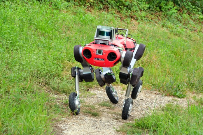 Roller-walking robot ANYmal moves efficiently on flat and inclined terrain.