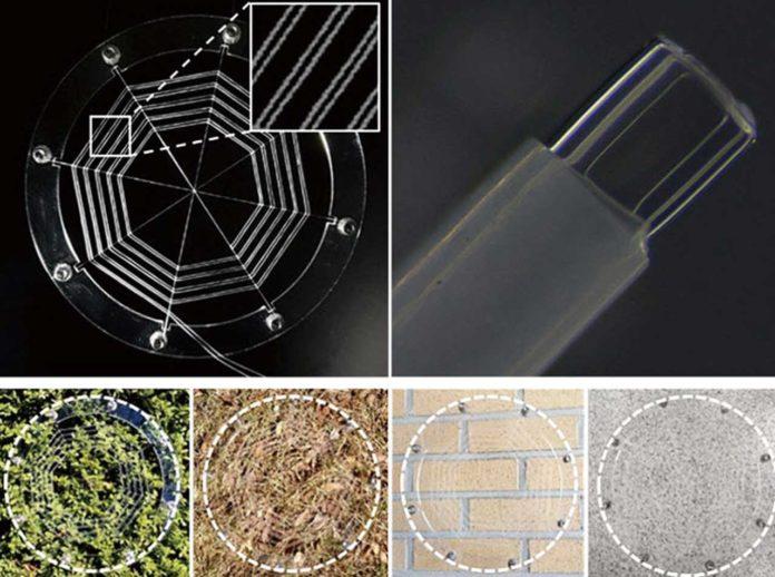 Ionic Spiderwebs