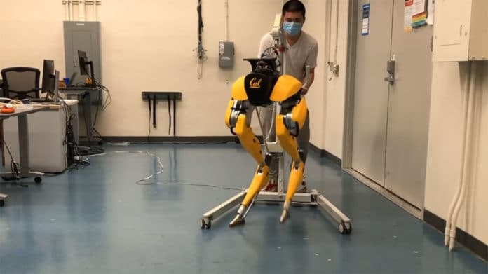 A bipedal robot Cassie learns to walk on its own
