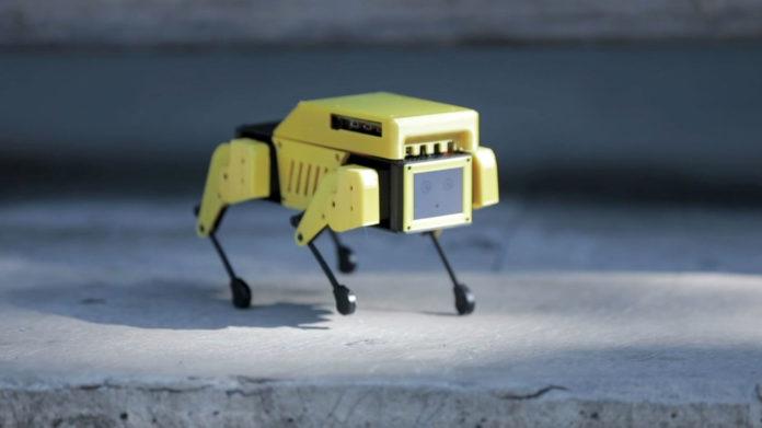 Mini Pupper, an open-source robot dog powered by Raspberry Pi.